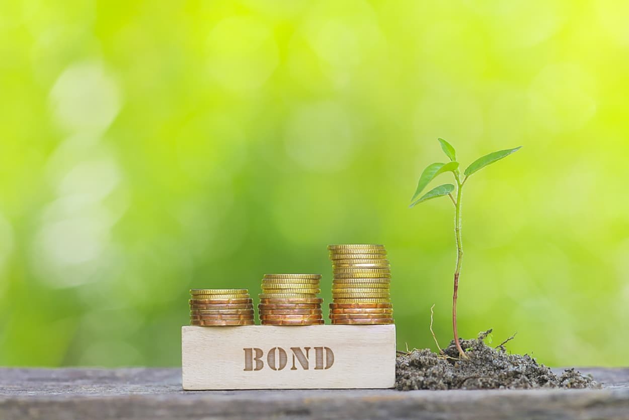 Green Bonds Go Mainstream in Asia & Africa
