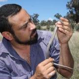 damian michael, joanne leila smith, david lindenmayer, rocky outcrops, australia, farming, sustainability, ecology