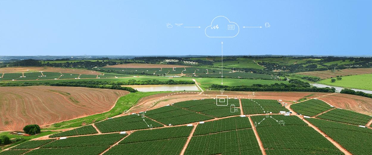 Digital-Farming-May-Help-Human-Workforce-Displacement.png