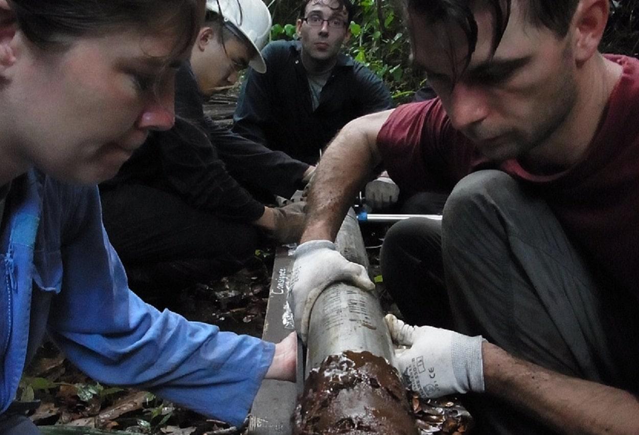 Satellite Study Shows Severity of Peatland Damage in SEAsia